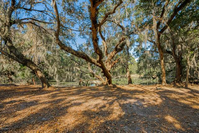 12 Dolphin Point Drive, Beaufort, SC 29907 (MLS #168848) :: RE/MAX Island Realty