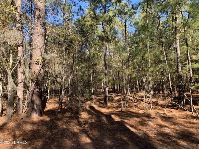 0 Pine Forest Loop, Ridgeland, SC 29936 (MLS #169244) :: RE/MAX Island Realty