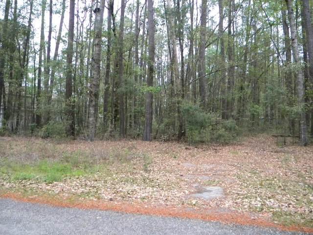 0120 Blue Gill Lane, Ridgeland, SC 29936 (MLS #170913) :: Coastal Realty Group