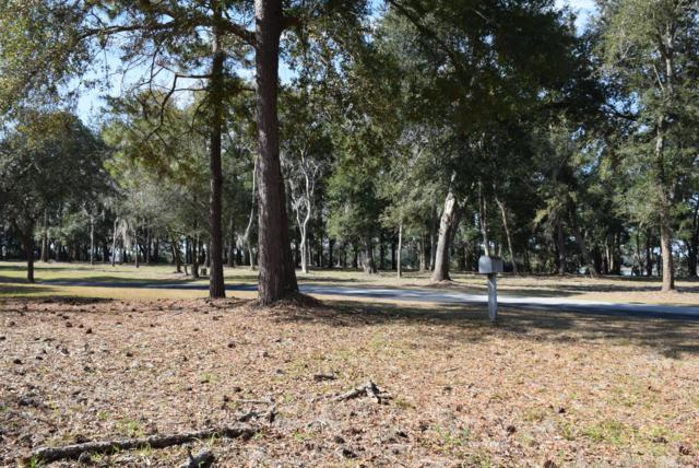 535 Distant Island Drive, Beaufort, SC 29907 (MLS #154973) :: RE/MAX Island Realty