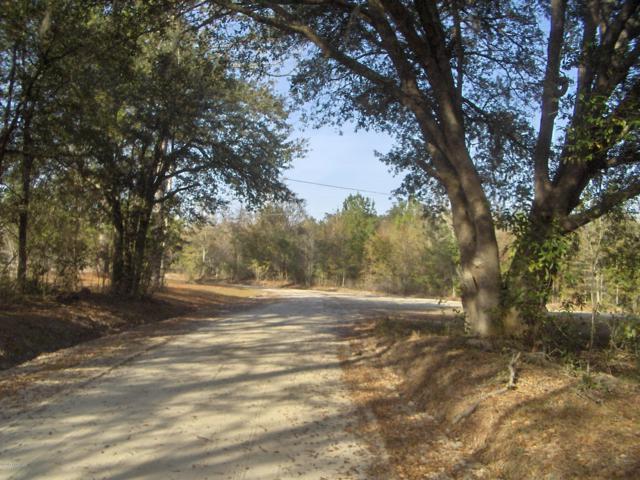 661 Tina Manker Road, Ridgeland, SC 29936 (MLS #155110) :: Shae Chambers Helms | Keller Williams Realty