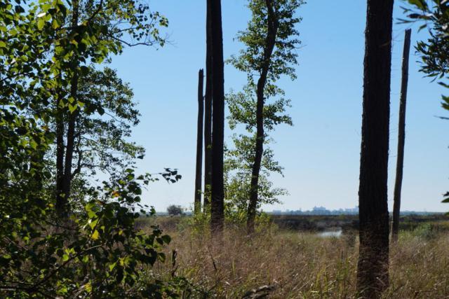 1744 Telfair Plantation Drive, Hardeeville, SC 29927 (MLS #159471) :: Shae Chambers Helms | Keller Williams Realty