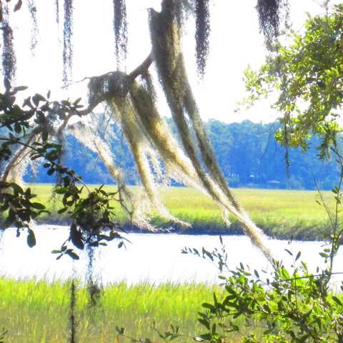 54 Bud Miley Drive, St. Helena Island, SC 29920 (MLS #163742) :: RE/MAX Island Realty
