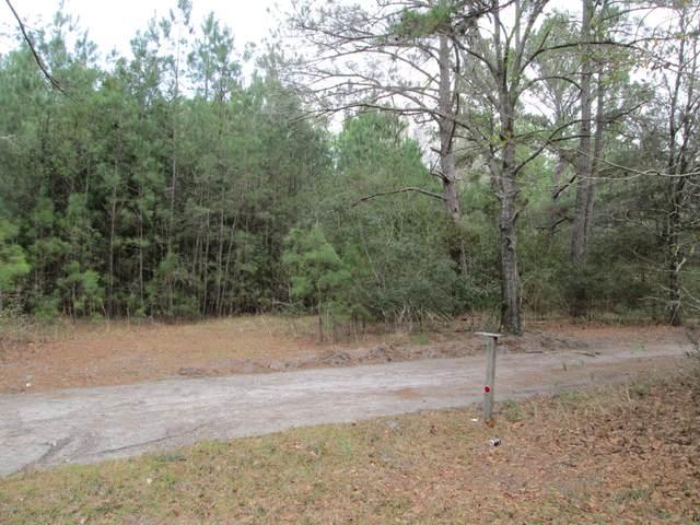 0 Catfish Circle, Ridgeland, SC 29936 (MLS #165806) :: RE/MAX Island Realty