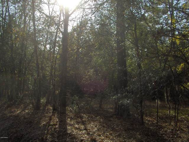 Tbd Cypress Branch - Highway 601 Road, Pineland, SC 29934 (MLS #167799) :: Coastal Realty Group