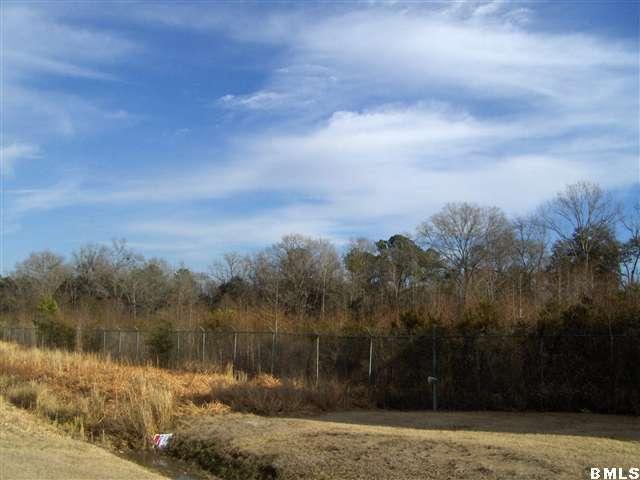 1390 Kings Highway, Yemassee, SC 29945 (MLS #125909) :: RE/MAX Coastal Realty
