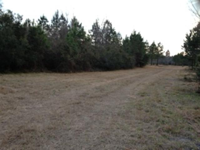 0 Highway 68, Early Branch, SC 29916 (MLS #133847) :: RE/MAX Coastal Realty