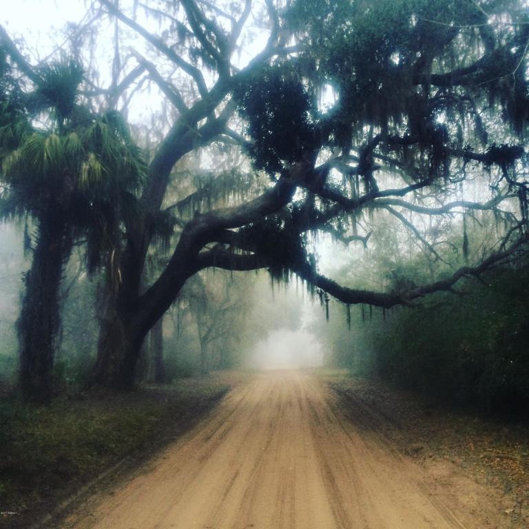Parcel-C Yard Farm Road - Photo 1
