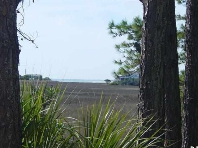 123 Ocean Creek Boulevard - Photo 1