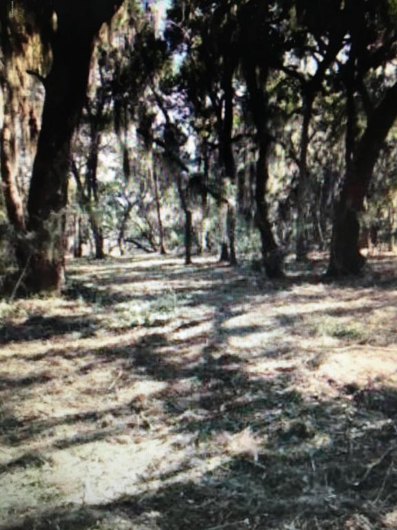 1507 Deanne Drive, Beaufort, SC 29902 (MLS #155321) :: RE/MAX Coastal Realty
