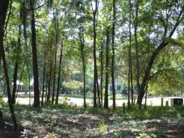 238 Locust Fence Road - Photo 1
