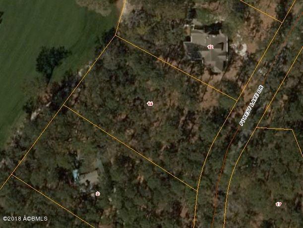 14 Forest Lake Drive, Daufuskie Island, SC 29915 (MLS #158455) :: RE/MAX Coastal Realty