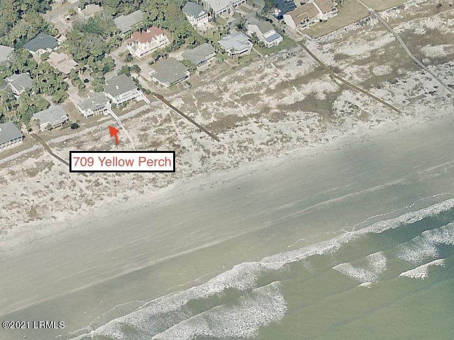 709 Yellow Perch Road - Photo 1