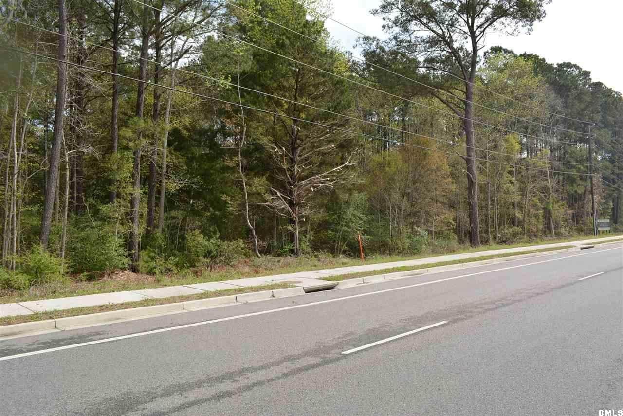 196 Savannah Highway - Photo 1