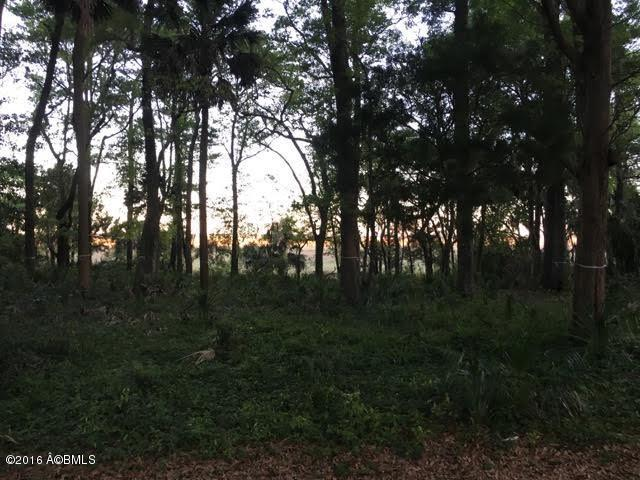 218 Cotton Dike Road - Photo 1