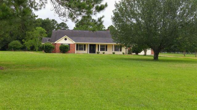 5433 Hidden Meadows, Orange, TX 77632 (MLS #189484) :: RE/MAX ONE