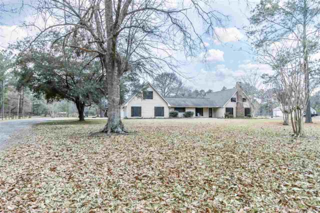 425 Creekwood St, Lumberton, TX 77657 (MLS #194551) :: TEAM Dayna Simmons