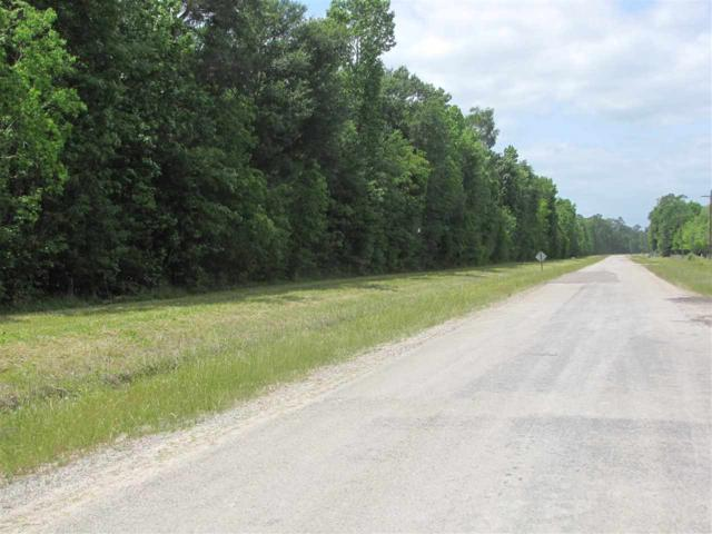 000 Old Sour Lake Rd., China, TX 77613 (MLS #195334) :: TEAM Dayna Simmons