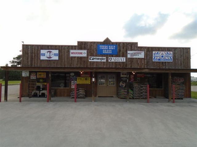 233 Spur 5, Winnie, TX 77665 (MLS #196073) :: TEAM Dayna Simmons