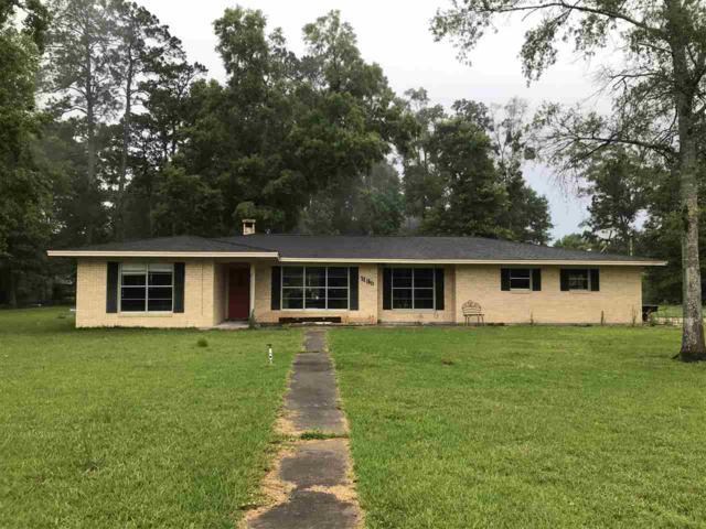1135 Pinecrest, Vidor, TX 77662 (MLS #196166) :: TEAM Dayna Simmons