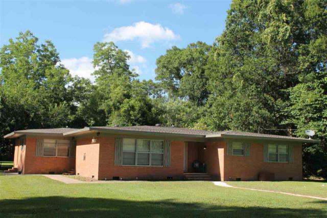 650 Durdin Drive, Silsbee, TX 77656 (MLS #196633) :: TEAM Dayna Simmons
