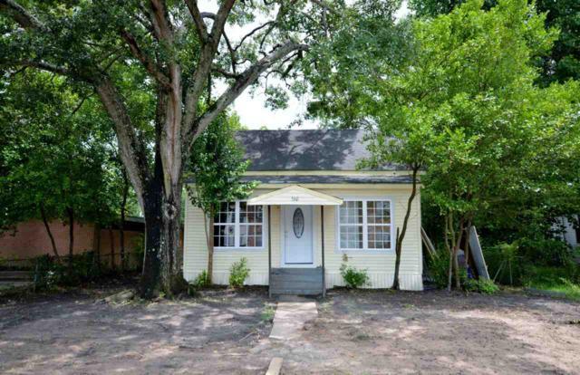 560 N 9th St, Silsbee, TX 77656 (MLS #196703) :: TEAM Dayna Simmons