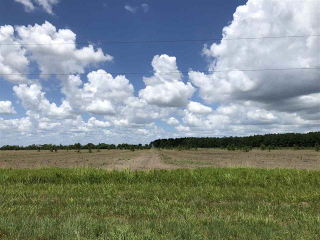 27540 Hwy 365, Beaumont, TX 77705 (MLS #197232) :: Triangle Real Estate