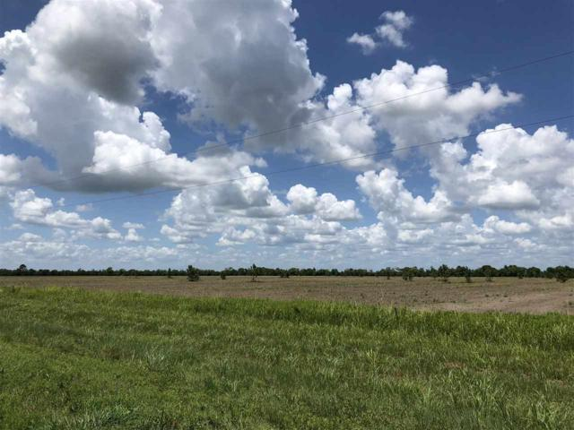Lot 9 Hwy 365, Beaumont, TX 77705 (MLS #197233) :: TEAM Dayna Simmons
