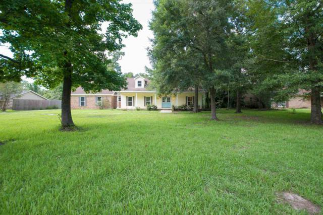 446 Piney Point, Sour Lake, TX 77659 (MLS #197544) :: TEAM Dayna Simmons