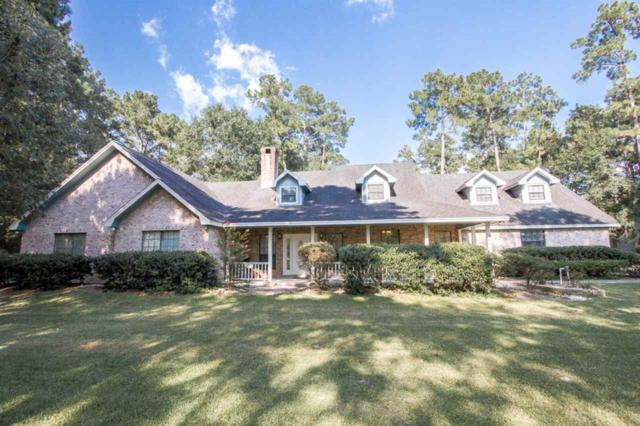 500 Country Wood Circle, Sour Lake, TX 77659 (MLS #197734) :: TEAM Dayna Simmons