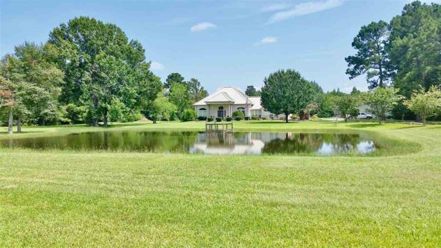 13299 Fm 365, Beaumont, TX 77705 (MLS #198096) :: TEAM Dayna Simmons