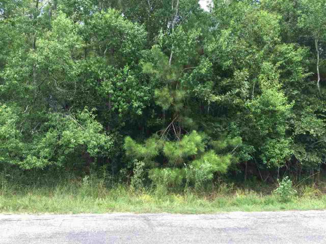 Pine Lake Dr, Sour Lake, TX 77659 (MLS #198142) :: TEAM Dayna Simmons
