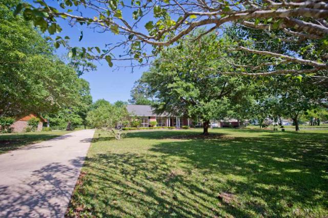 406 Pineshadows, Sour Lake, TX 77659 (MLS #198313) :: TEAM Dayna Simmons