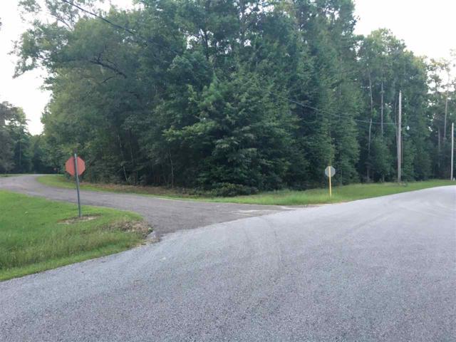 Blk R Lot 4 Wildwood Drive, Village Mills, TX 77663 (MLS #198396) :: TEAM Dayna Simmons