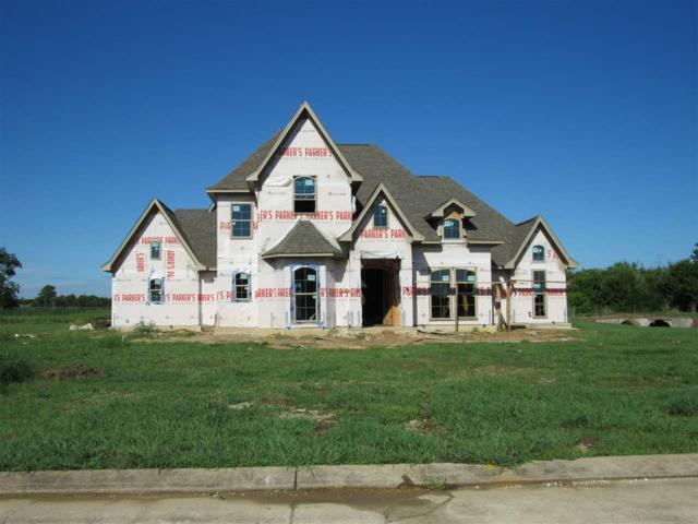 3350 Esplanade, Beaumont, TX 77707 (MLS #198729) :: TEAM Dayna Simmons