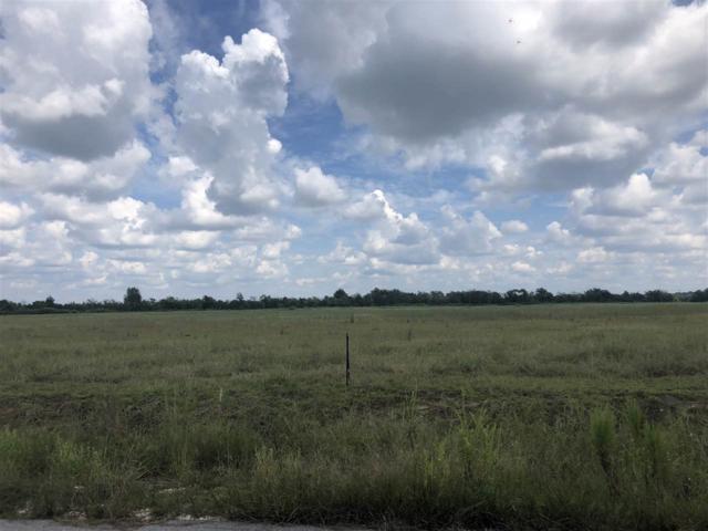 3665 Foxtail Trail, Beaumont, TX 77713 (MLS #198921) :: TEAM Dayna Simmons