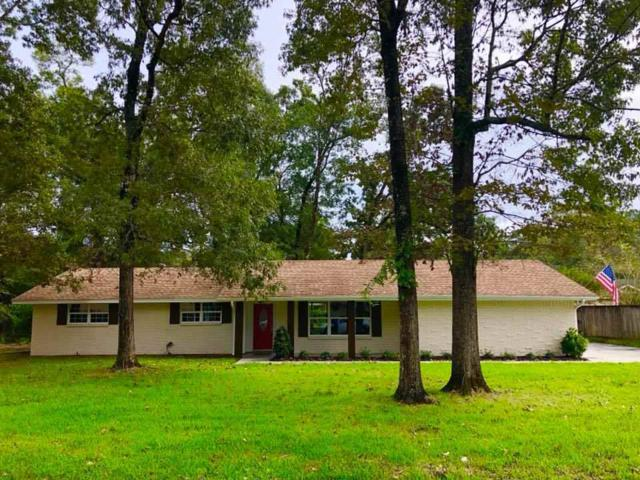 131 Wood Manor, Sour Lake, TX 77659 (MLS #199068) :: TEAM Dayna Simmons