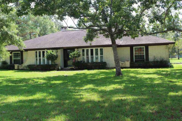433 W Pine Shadows, Sour Lake, TX 77659 (MLS #199174) :: TEAM Dayna Simmons