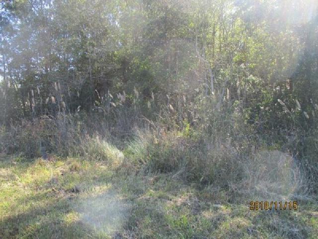 TBD Edgewood, Vidor, TX 77662 (MLS #200112) :: TEAM Dayna Simmons