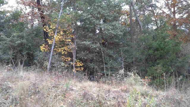 .157 Acre Lot Camelot, Woodville, TX 75979 (MLS #200329) :: TEAM Dayna Simmons