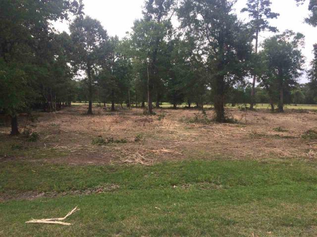 00 Pineshadows, Sour Lake, TX 77659 (MLS #201038) :: TEAM Dayna Simmons