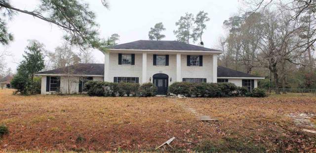 505 W Pineshadows, Sour Lake, TX 77659 (MLS #201228) :: TEAM Dayna Simmons