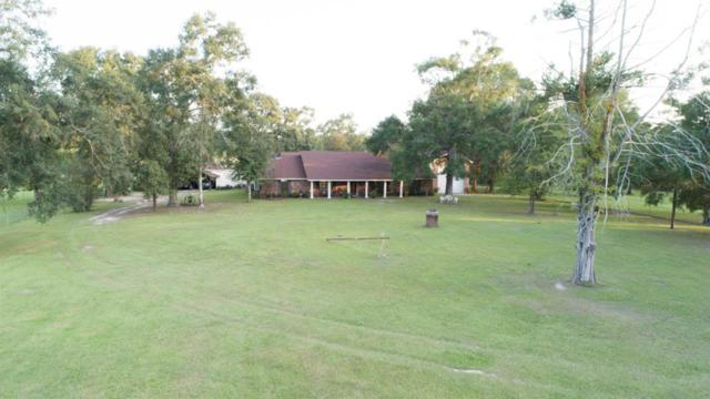 7564 Biscamp, Silsbee, TX 77656 (MLS #201740) :: TEAM Dayna Simmons