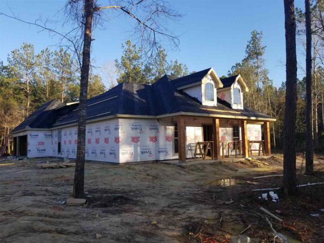 10615 Rock Creek Ridge Dr., Kountze, TX 77625 (MLS #201779) :: TEAM Dayna Simmons