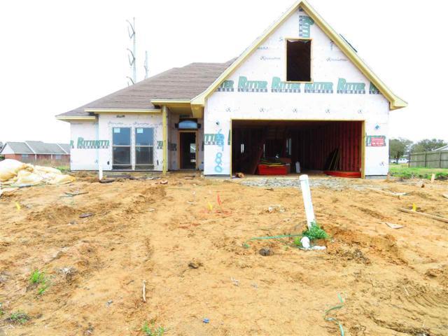 6980 Royal Meadows Blvd, Port Arthur, TX 77642 (MLS #202277) :: TEAM Dayna Simmons