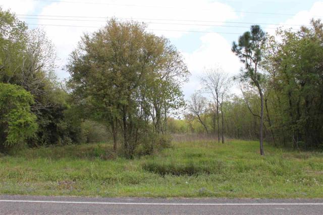 1632 Fm 1406, Winnie, TX 77665 (MLS #202815) :: TEAM Dayna Simmons