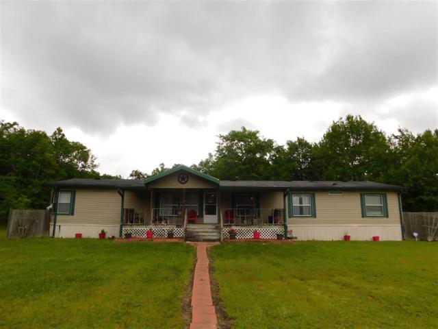 4547 Black Cat Road, Sour Lake, TX 77659 (MLS #203606) :: TEAM Dayna Simmons