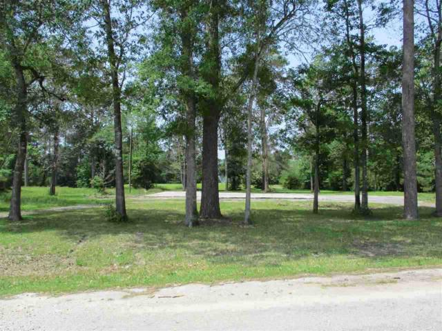 1406 Lakeview Dr., Sour Lake, TX 77659 (MLS #204213) :: TEAM Dayna Simmons