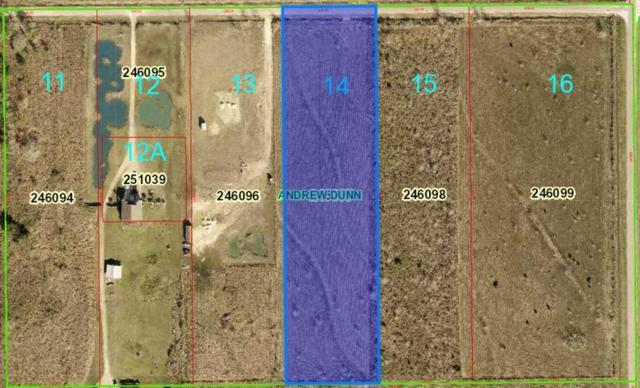 13567 Todd Road, Winnie, TX 77665 (MLS #204253) :: TEAM Dayna Simmons