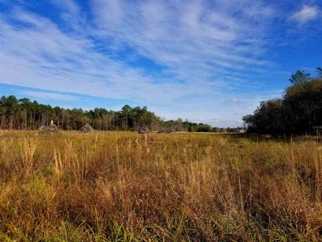 000 Tract 1 Old Grayburg Road, Sour Lake, TX 77659 (MLS #204551) :: TEAM Dayna Simmons